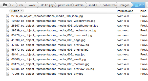 Screenshot of derative filenames from CollectiveAccess